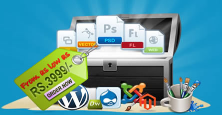 Leading Web Designing Company in india